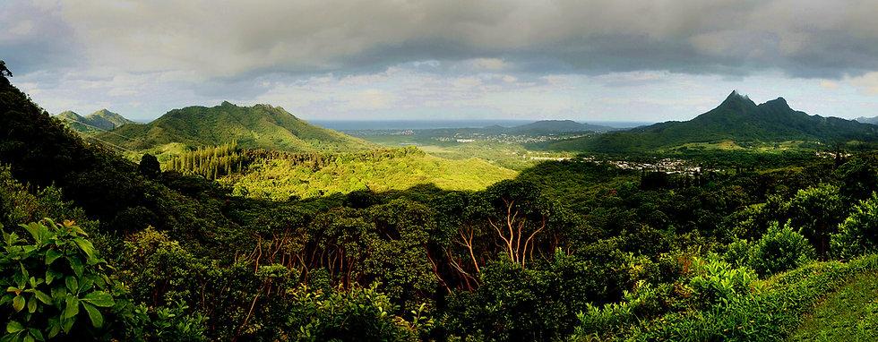 Oahu_Landscape.jpg