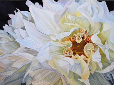 Rhapsody - white dahlia - SOLD