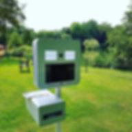 On profite du soleil 🌞_Dream Box Photo