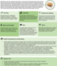CareSheet-BallPython.jpg