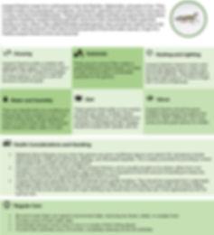 CareSheet-LeopardGecko.jpg
