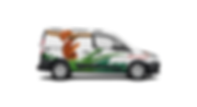 Car Wrap Snake-02-01.png