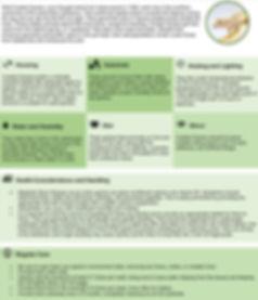 CareSheet-CrestedGecko.jpg