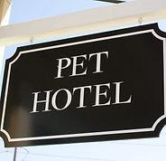 pet-hotel-1-450x301.jpg