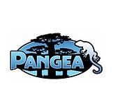 Pangea Block.jpg