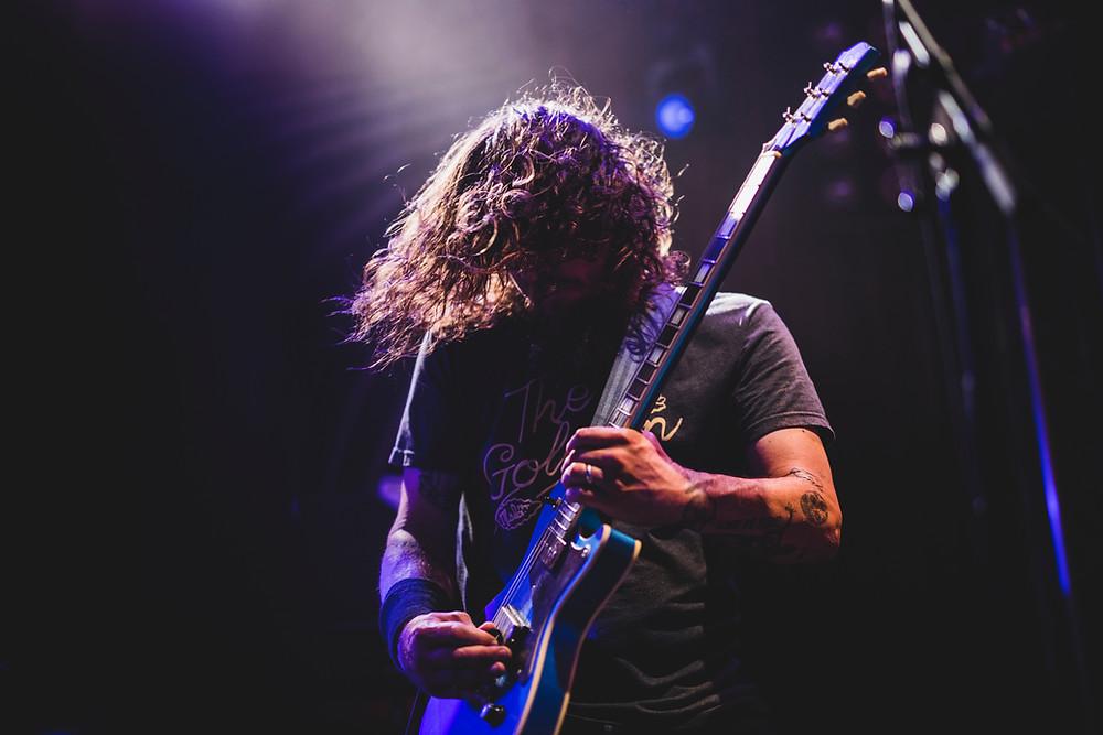 Gentle Haven Music, Teach, Guitar Artistry, Web Design