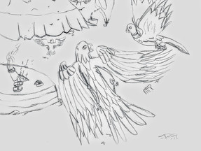 Drawing: The Migrating Birds