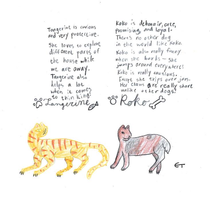 Imaginary Pets, Tangerine and KoKo