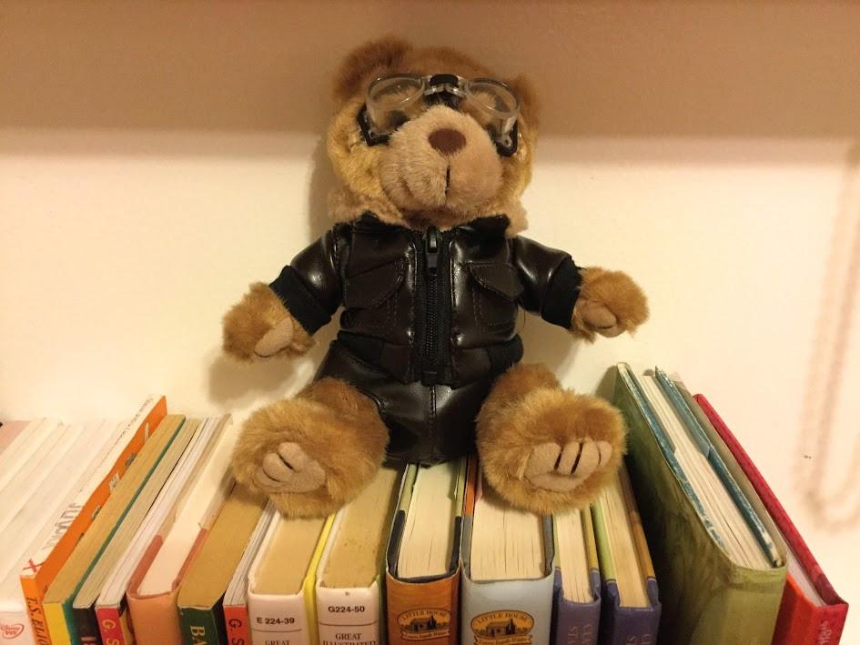 The pilot bear.