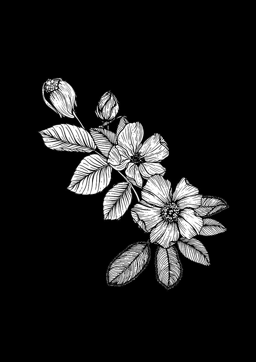 200512_Grief-Mod-1-Flower_V2_edited.png