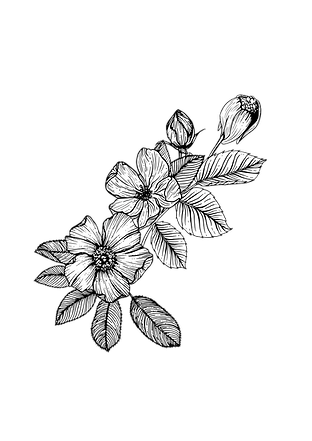200512_Grief-Mod-1-Flower_V2.png
