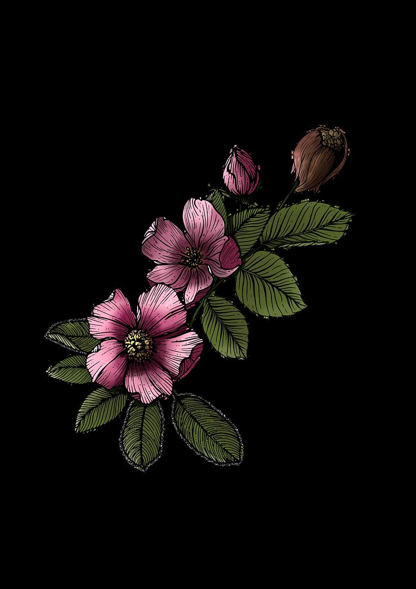 200519_Grief Mod 2 Flower_V3.png