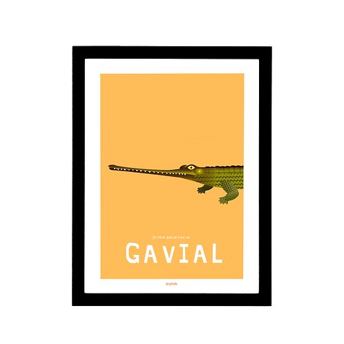 Affiche Le Gavial