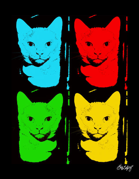 Didyoung_-Warhol-Meet-Will-Chill_Digital
