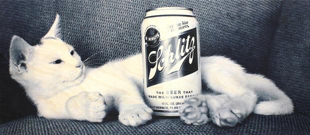 Didyoung_Schlitz-Cat.jpg