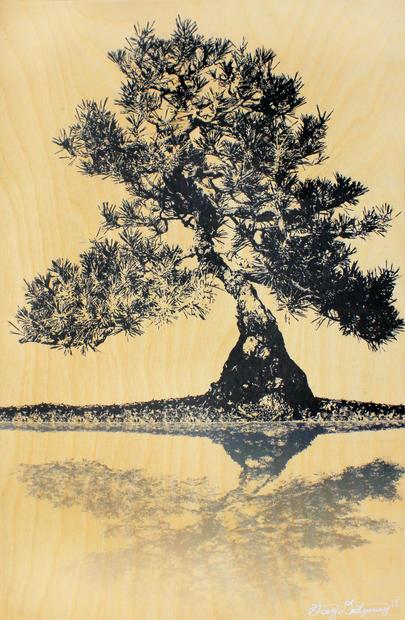 Didyoung_-Bonsai-Reflection.jpg