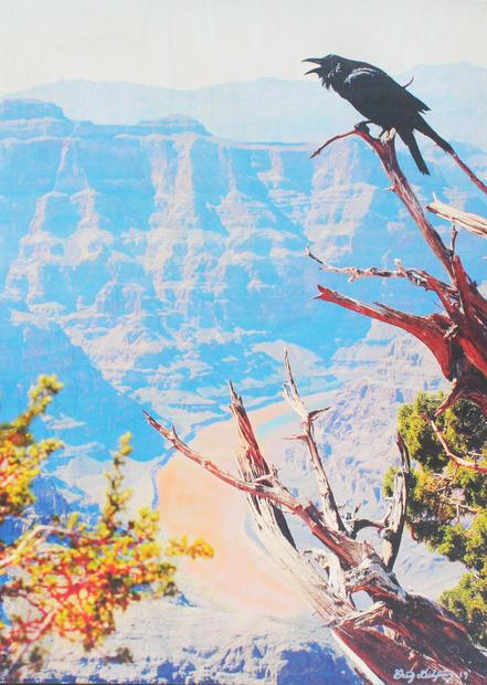 Didyoung_Crowing-Along-The-Colorado.jpg