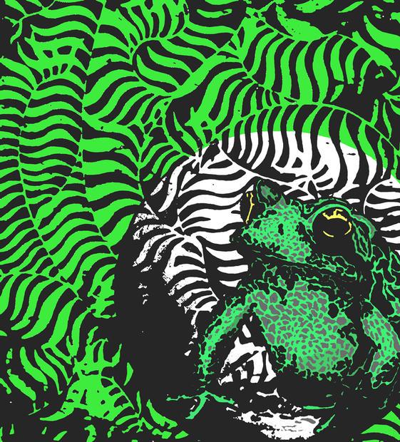 Didyoung_Patty-Frog_Digital.jpg