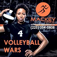 Volleyball Wars