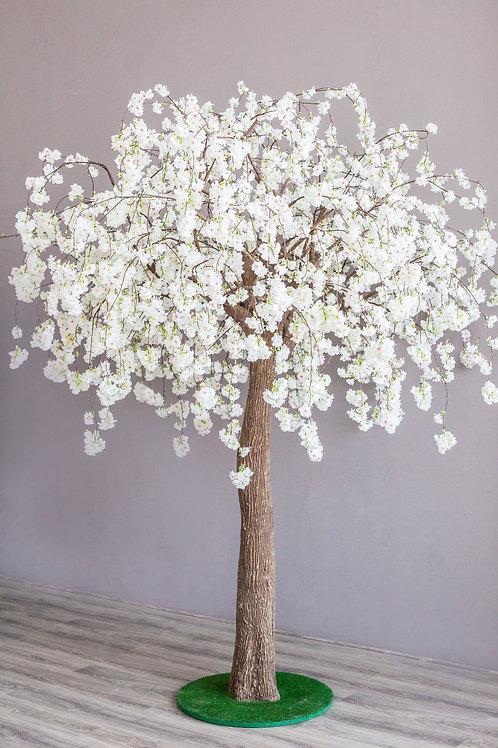 Аренда искусственного дерева Плакучая Сакура Белая 3м.
