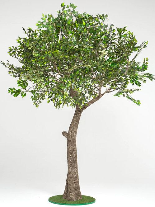 Аренда искусственного дерева Фикус 3м.