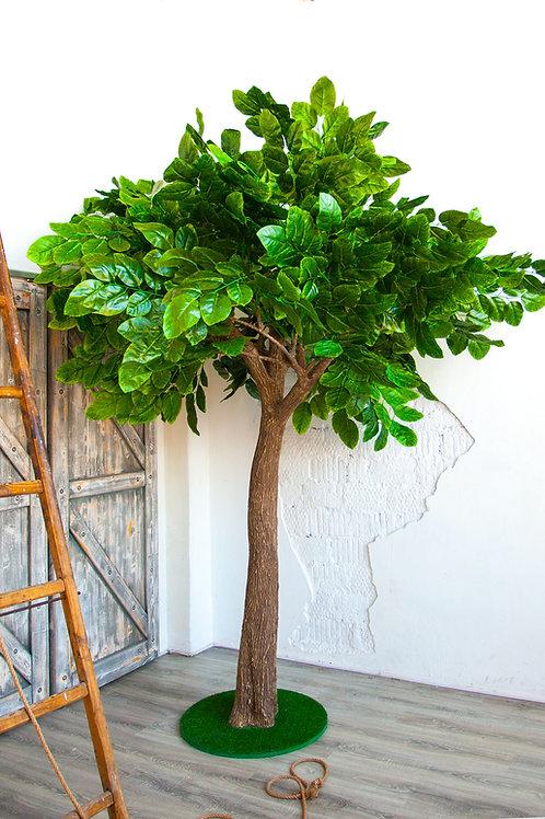 Аренда искусственного дерева Орех 3 м.