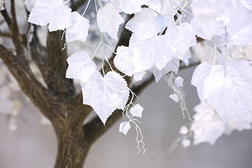 Аренда искусственного дерева Белый Виноград 3 м.