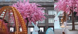 Сакура у ЦУМА.Аренда дерева