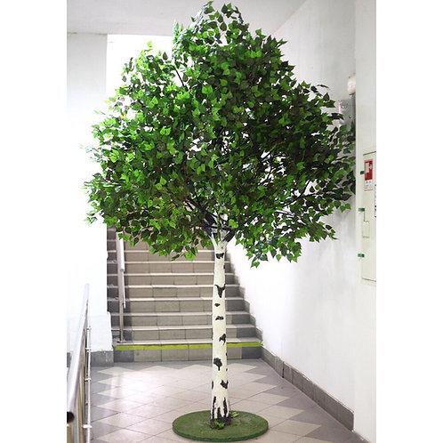 Аренда искусственного дерева Береза 3.30м.