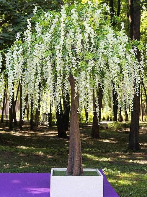Аренда искусственного дерева Глициния белая 3м.