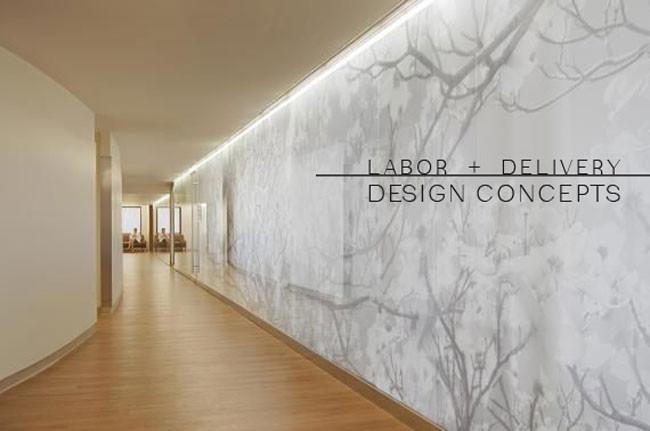 concepts | labor + delivery