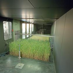 Inside wind tunnel