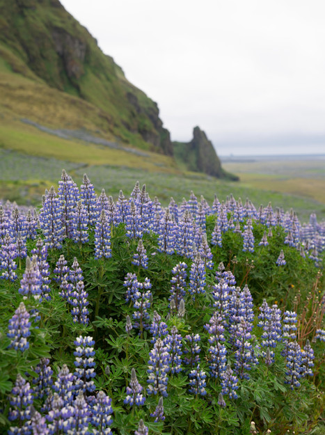 Next on the Itinerary: Iceland