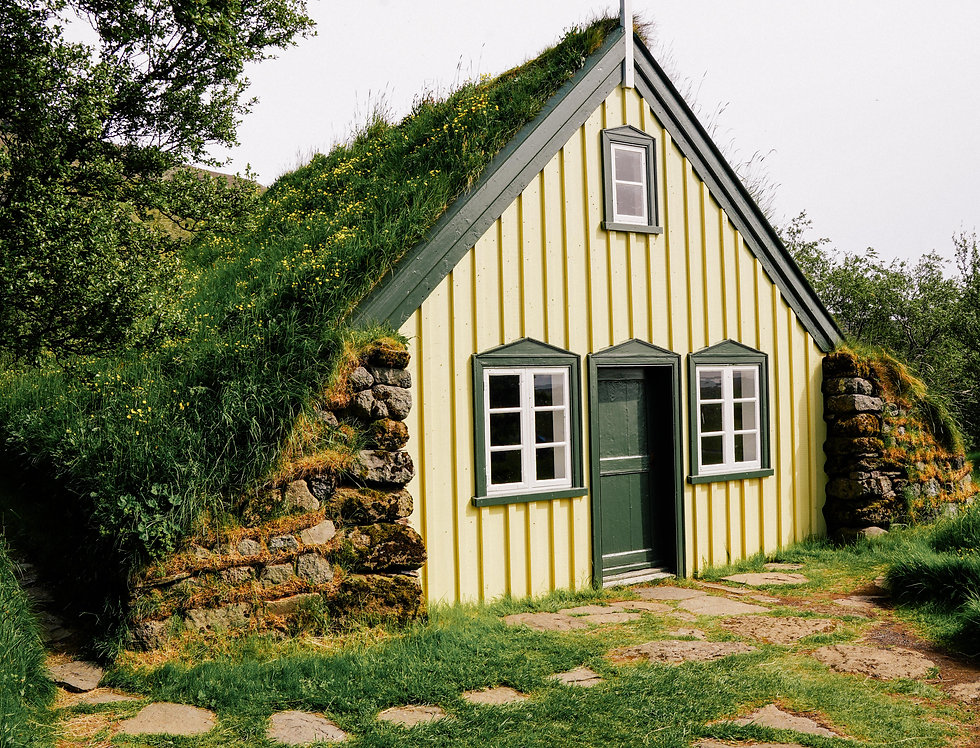 Grass Roof