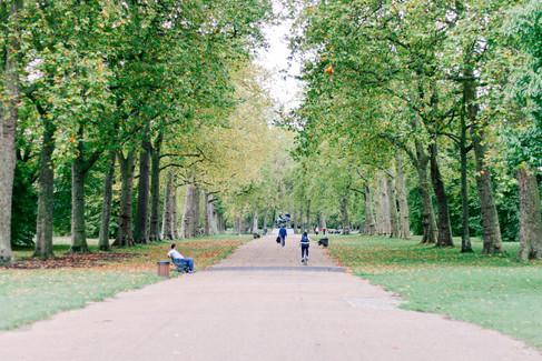 Hyde Park Walk
