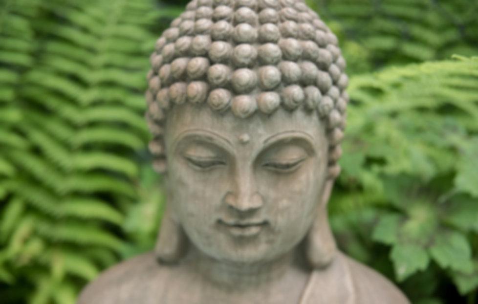 Buddha watches over