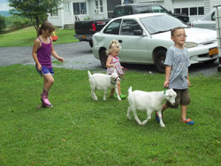 Cloud & Bella with kids