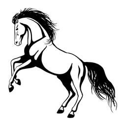 Horse 2012