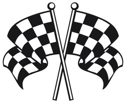Checkered flags 6022