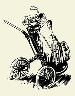 Golf bag 6010