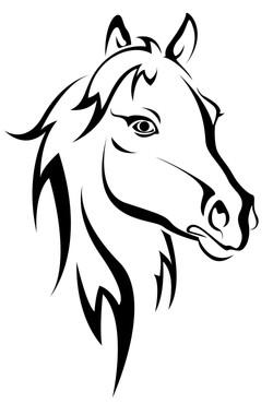 Horse 2013