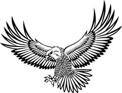Eagle 5009