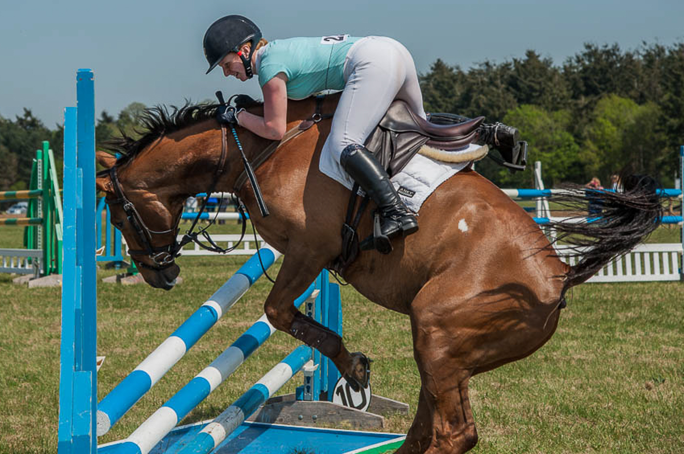 Thrills and spills at the South Suffolk Show