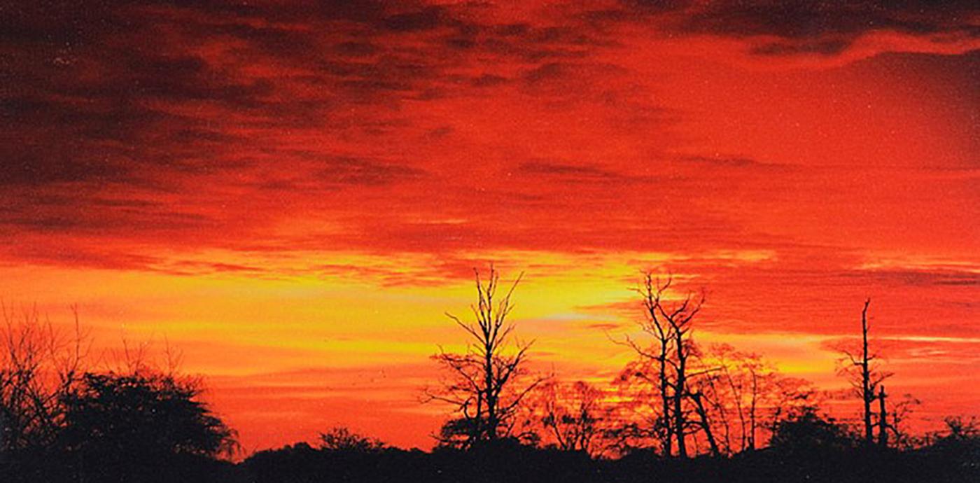 Breckland Sunrise
