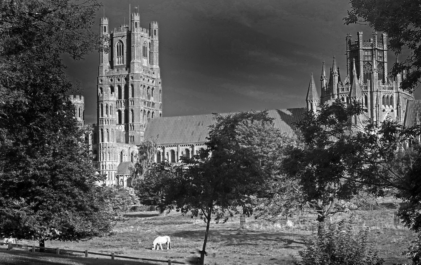 Glory Of Ely