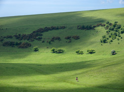 Riding the South Downs