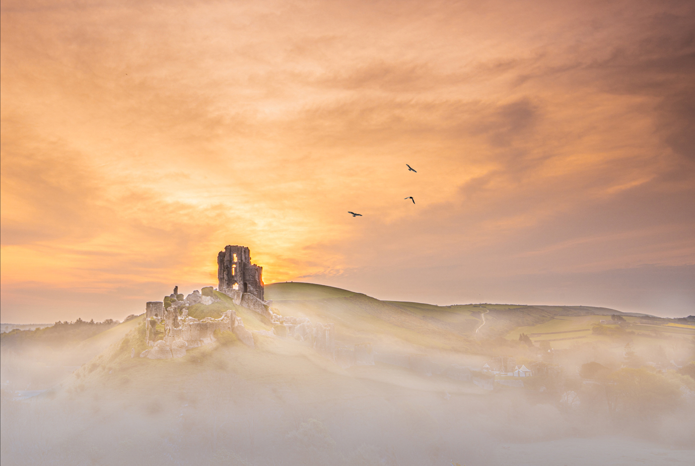 Misty Corfe at dawn