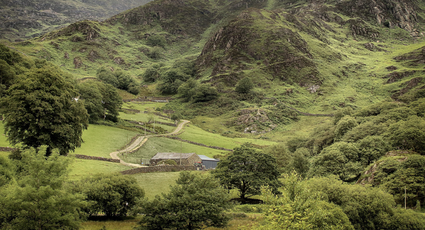 Farm - Snowdonia National Park