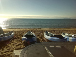 Palm Cove Sea Kayak