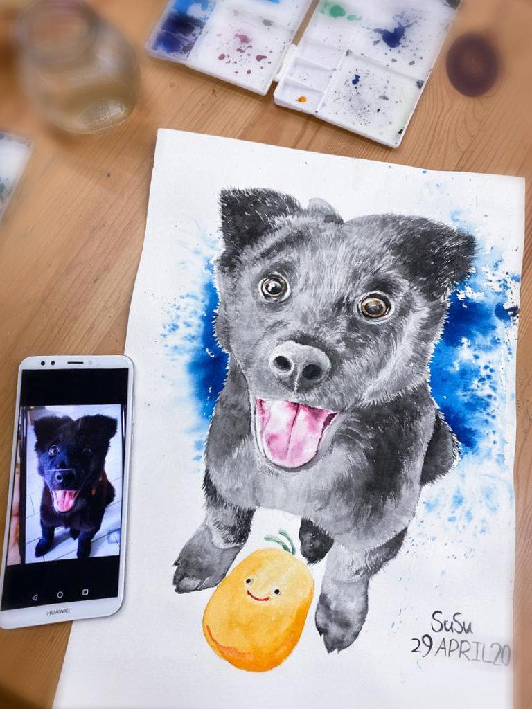 寵物繪畫工作坊 / Pet Drawing Workshop